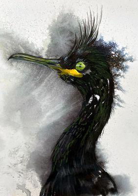 Cropped bird 1 margaret moore