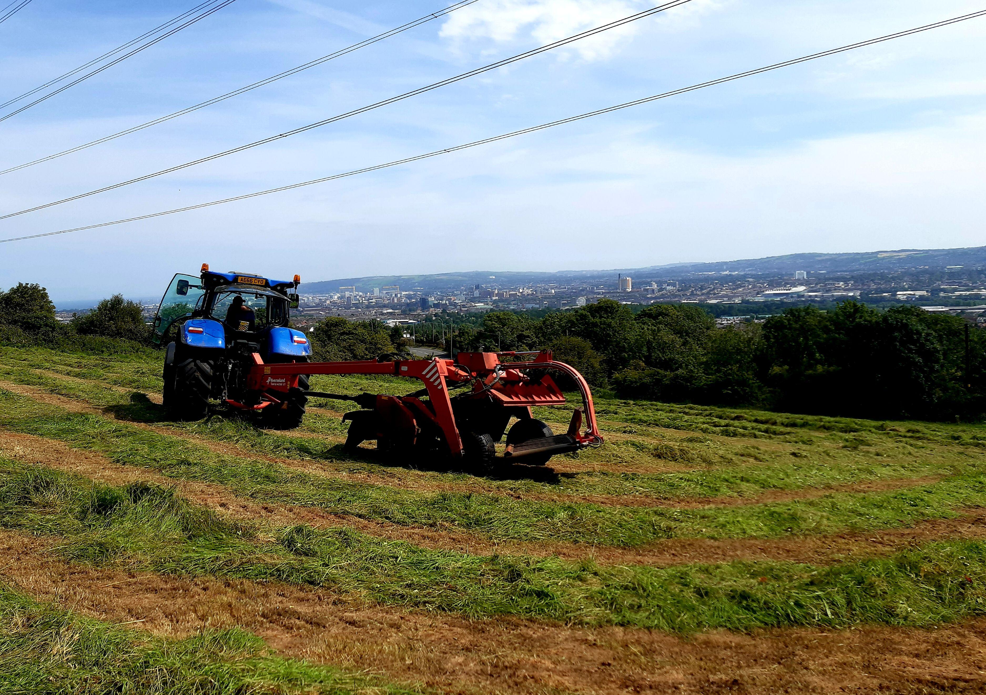 OFFICE VIEW: Farmer Edwin Reid at work in the sun