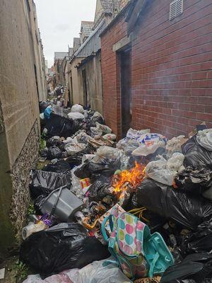 Cropped holyland dumping