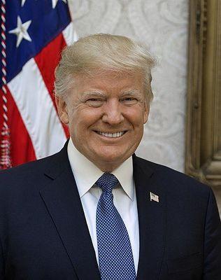 Cropped donald trump official portrait