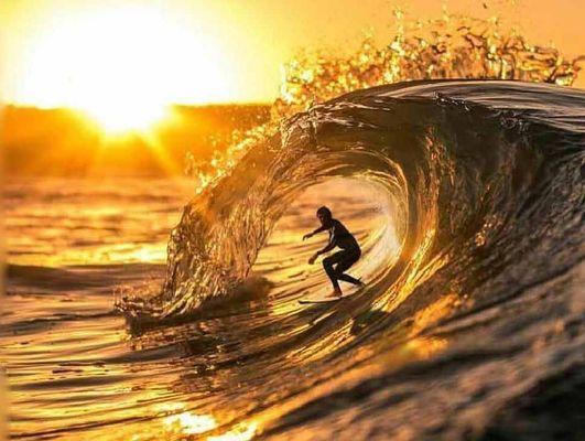 Cropped rev karen surfer