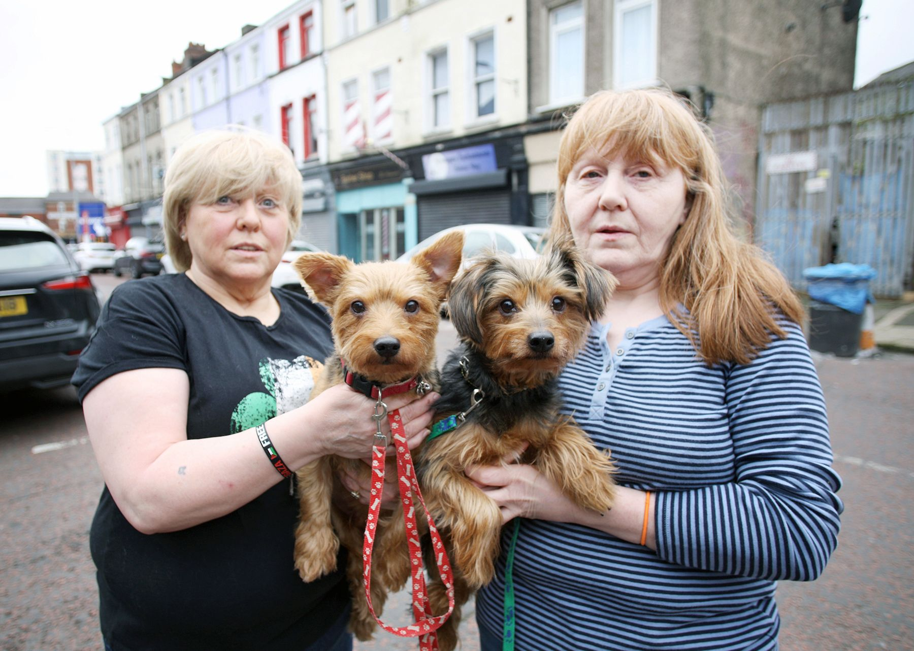 HOME SWEET HOME: Brenda and Angel with two of their dogs in Smithfield, a place that their family has called home for two hundred years