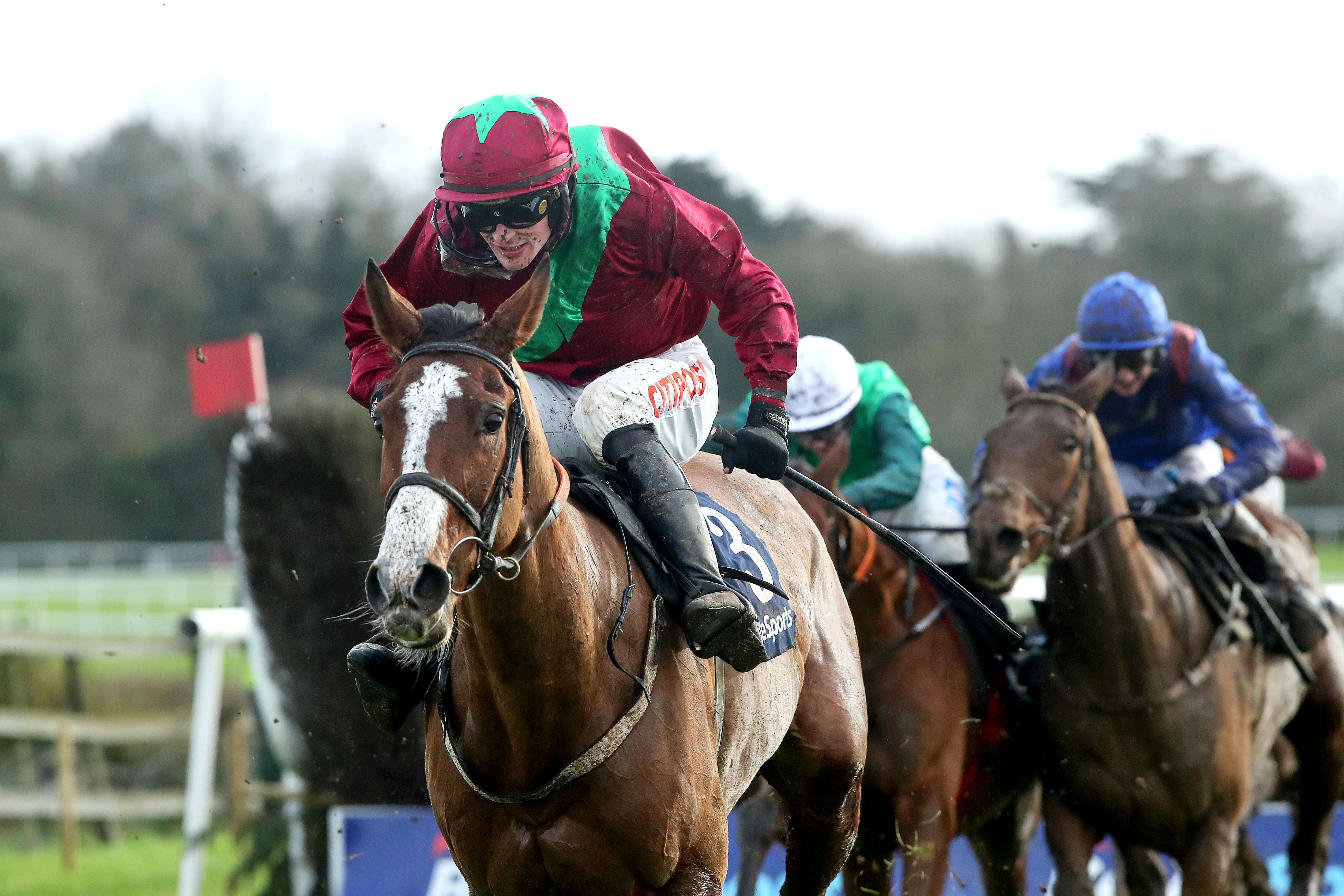 Agusta Gold (10/1) can land the Irish Grand National at Fairyhouse for Willie Mullins and Danny Mullins