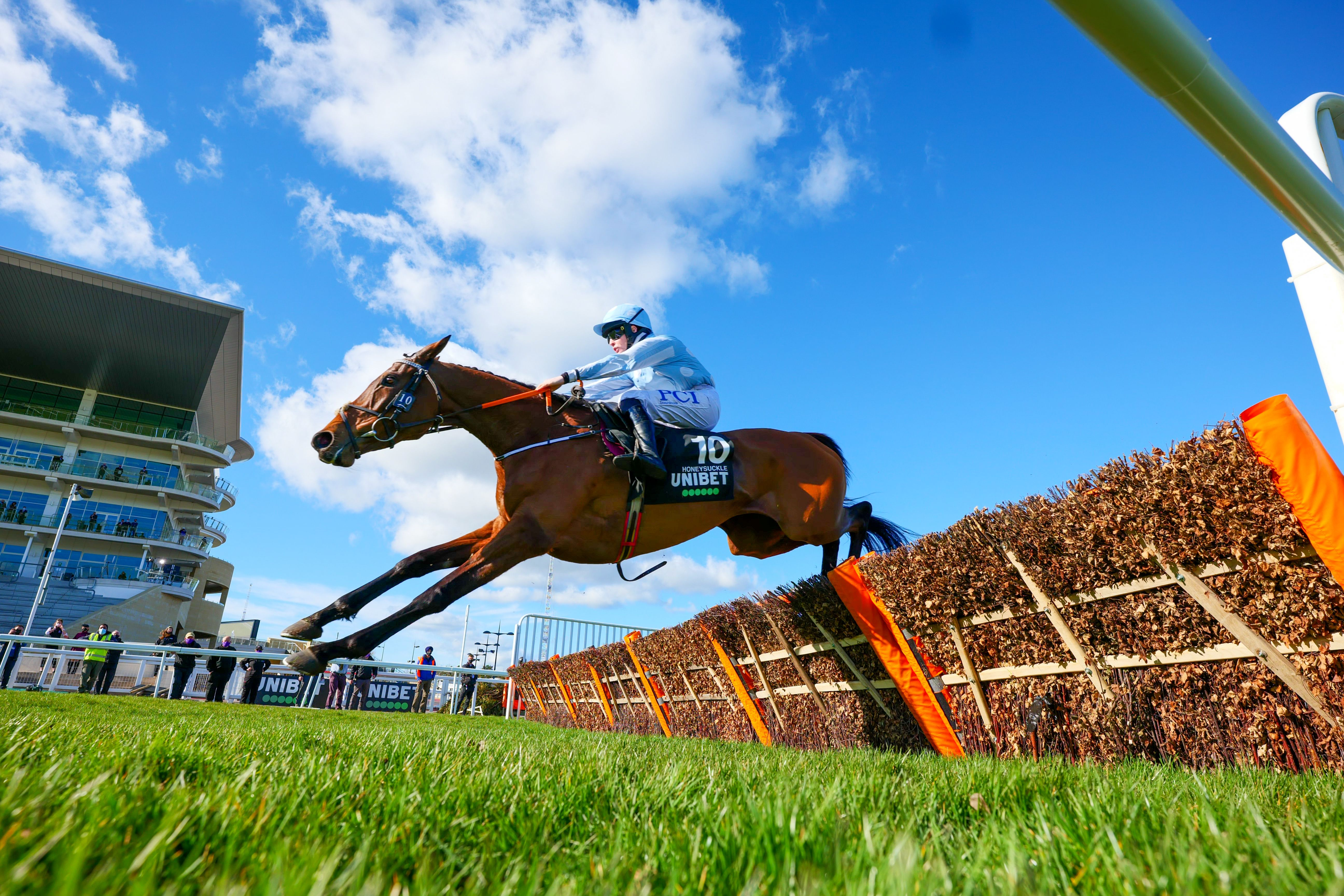 Champion Hurdle hero Honeysuckle can maintain her unbeaten record when she lines up at Punchestown on Friday for Henry de Bromhead and Rachael Blackmore