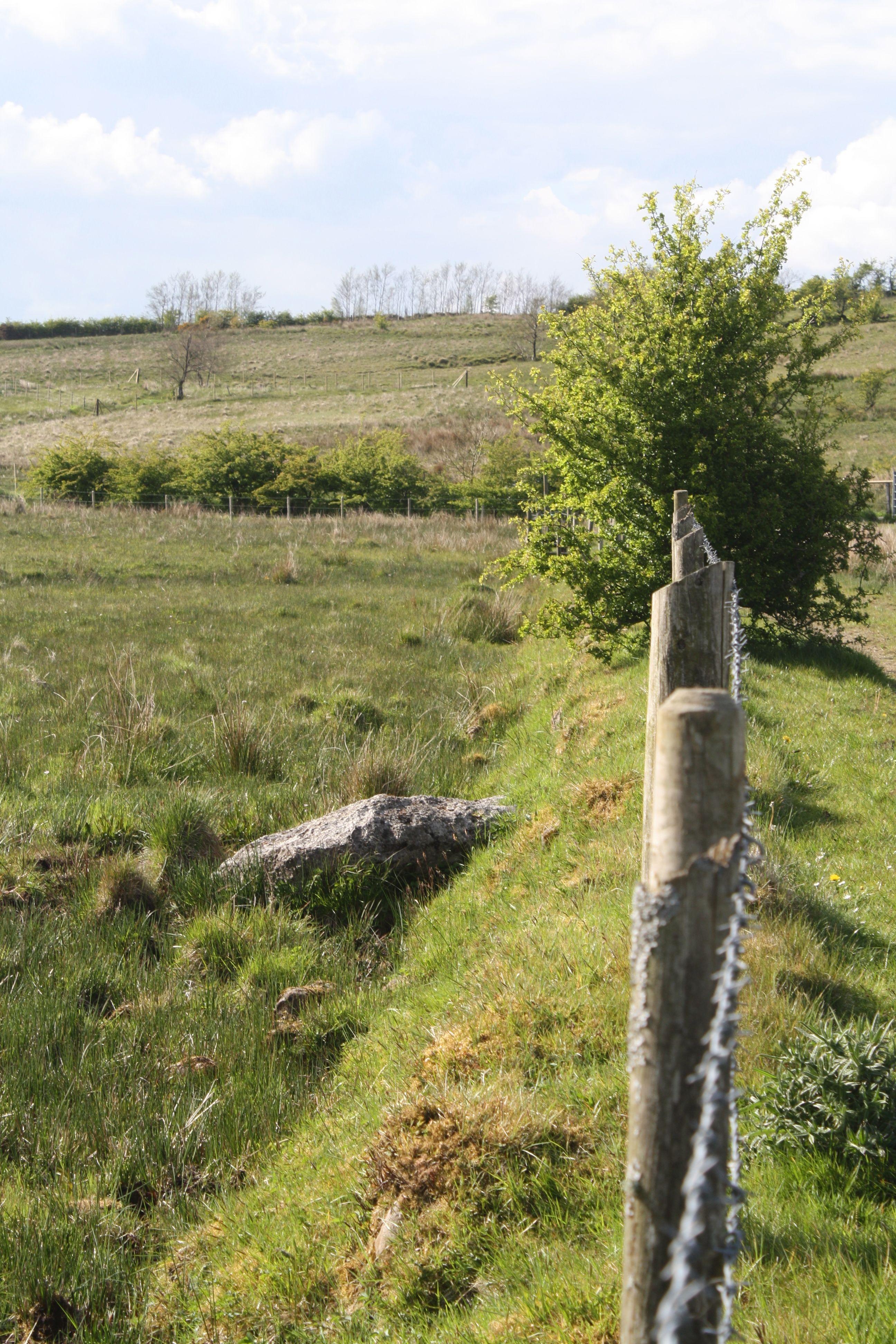 VANTAGE POINT:  Slievenacloy where Dúlra spotted the wheatear's nest