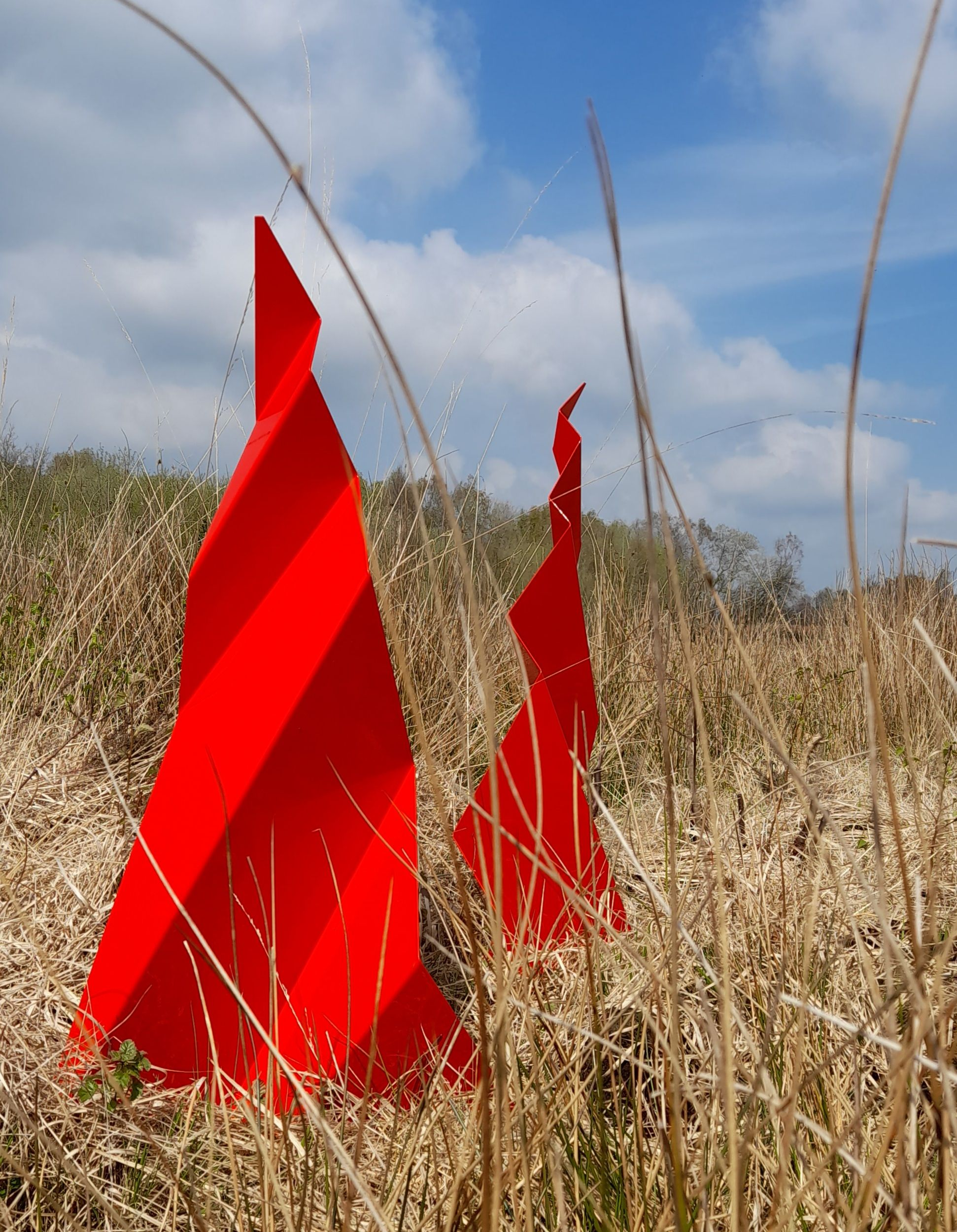 A NEW BOG STANDARD BEARER: Rosalind Lowry\'s sculpture trail at Derrytresk.
