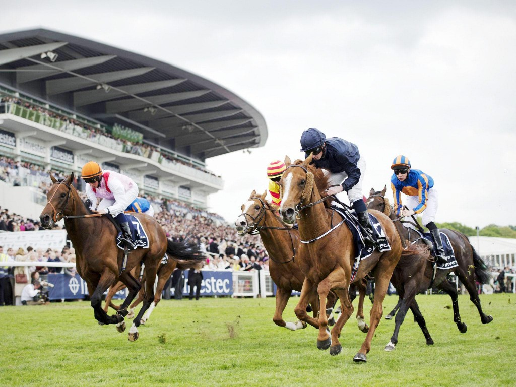 IRISHDERBYWEEKEND: English Derby winner Ruler of the World will attempt to land the coveted Derby double at the weekend when he goes off at the Curragh and is a 6/5 shot with Sean Graham