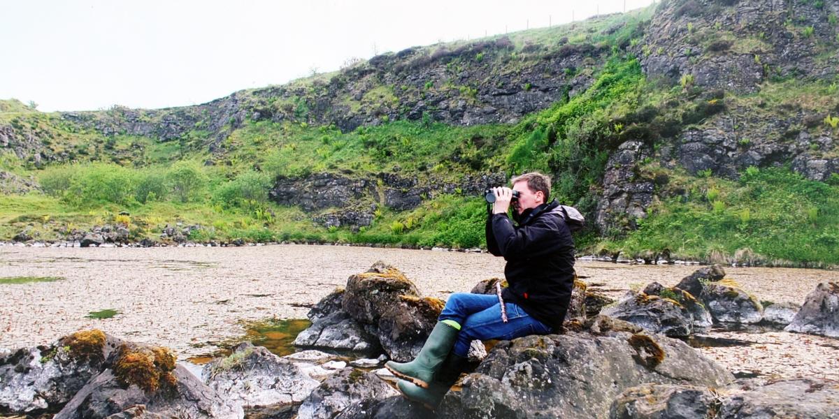 Dúlra birdwatching