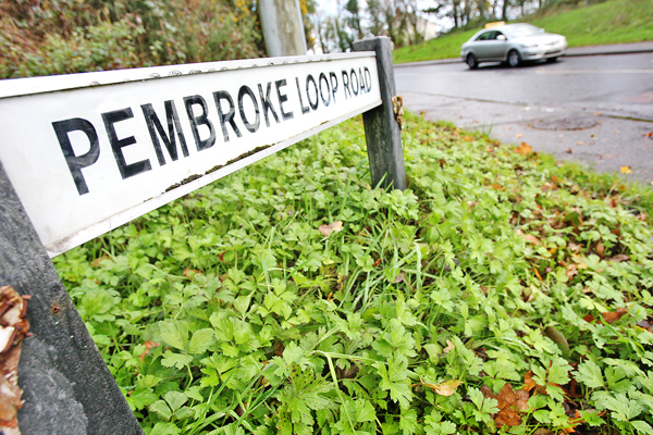 Pembroke loop road sign 22211mj16