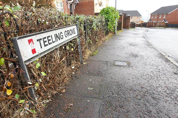Teeling grove sign 31312mj16
