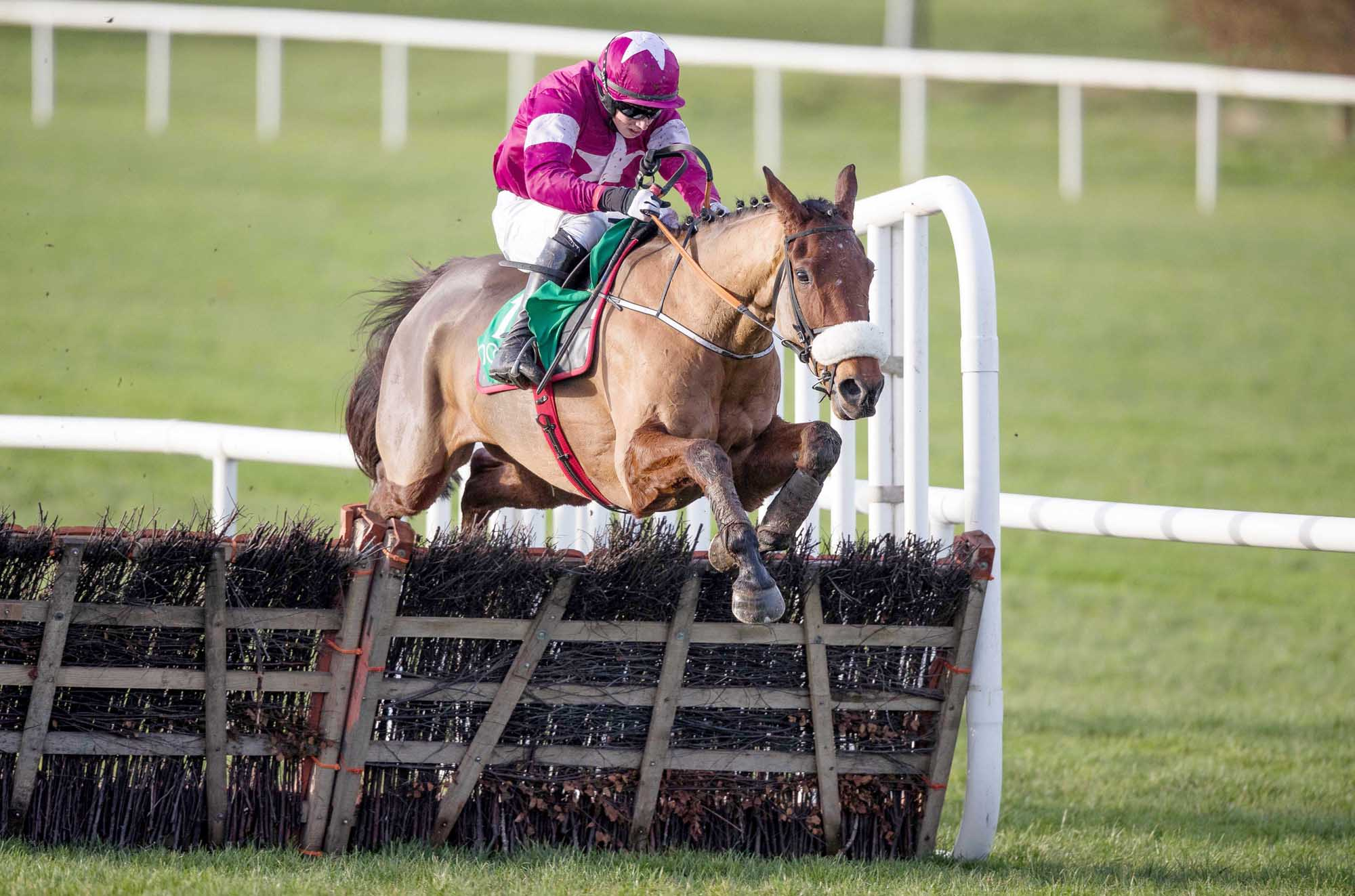 BIGRACE:  Death Duty is 1/2 to win the Lawlors Hotel Hurdle at Naas on Sunday to make it four wins on the bounce, but keep an eye out for Turcagua who looks value at 3/1 for the Mullins yard