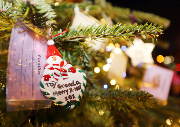As PIPS families held the annual \'Tree of Life\' ceremony, plans for the future were being outlined by its board