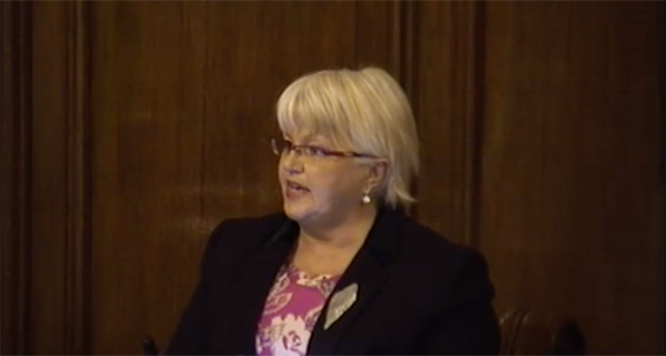 Councillor Ruth Patterson in the chamber last night