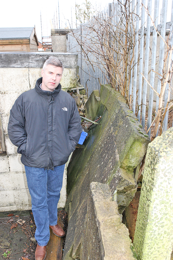 AGGRESSIVE: Cllr Steven Corr surveys the damage to the garden wall with the Japanese Knotweed growing behind