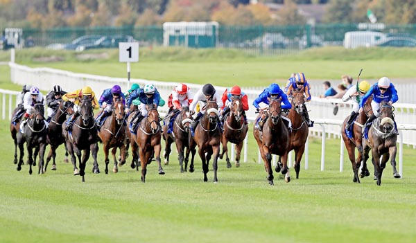 2000 Guineas hope: We are taking on the Aidan O'Brien hotpot, Churchill in Saturdays 2000 Guineas and are siding with the unbeaten Richard Hannon trained Barney Roy who is around 4/1 withSean Graham Bookmakers