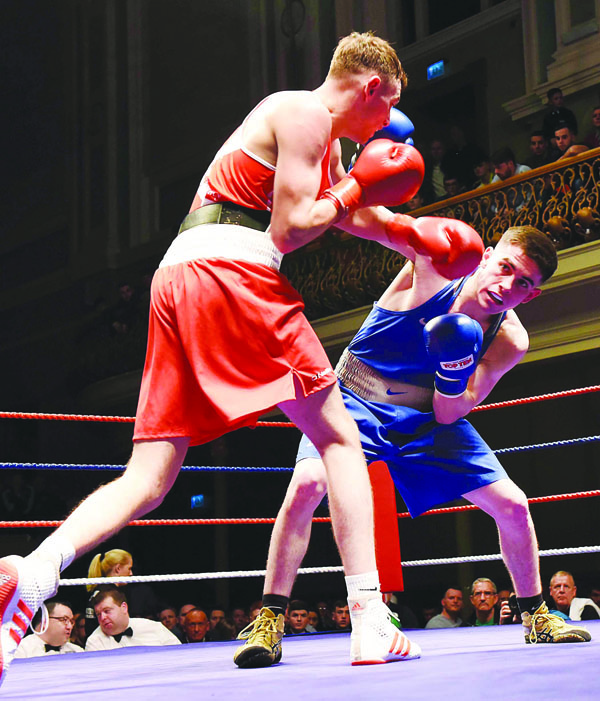 Ulster elite boxing ulster 50241117