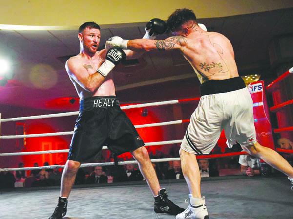 Pro boxing devenish 36100218