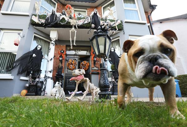 Halloween house antrim road 011710jc18