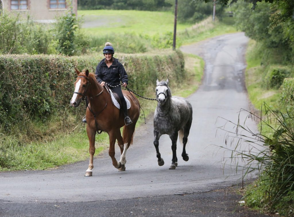 FOLLOWING THE LEADER: A rider leads a horse along a country road outside Lisburn on Sunday afternoon