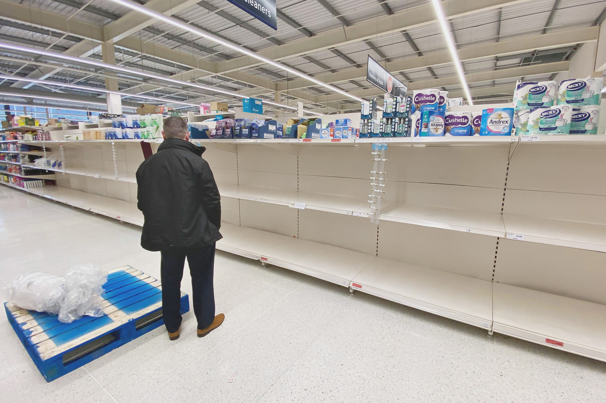 RESTOCK: An out-of-luck shopper stares at the empty shelves in Sainsbury\'s in the Kennedy Centre