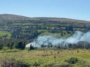 APPEAL: Gorse fire in Colin Glen Forest Park yesterday