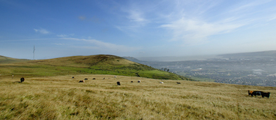 Divisblack mountain