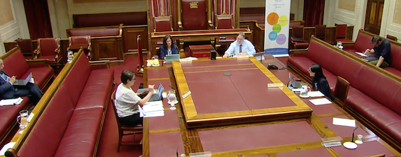 HOT SEAT: MLAs at the Assembly Health Committee meeting on Thursday past.